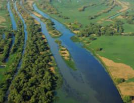 Danube Delta Biosphere Reserve Photo courtesy of Staffan Widstrand Rewilding Europe