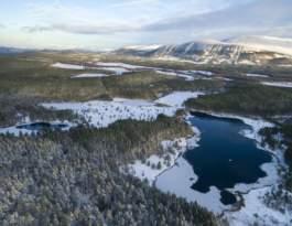 Endangered Landscapes Programme case study